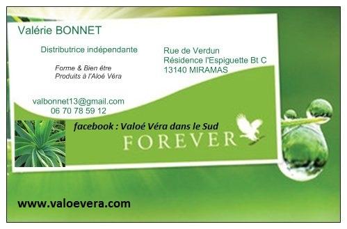 Carte De Visite Aloe Vera IA21
