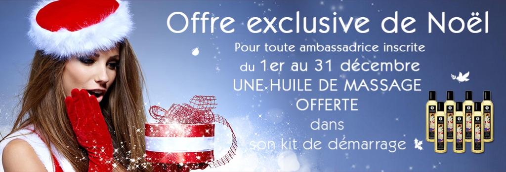 Offre-exclusive-de-Noel3
