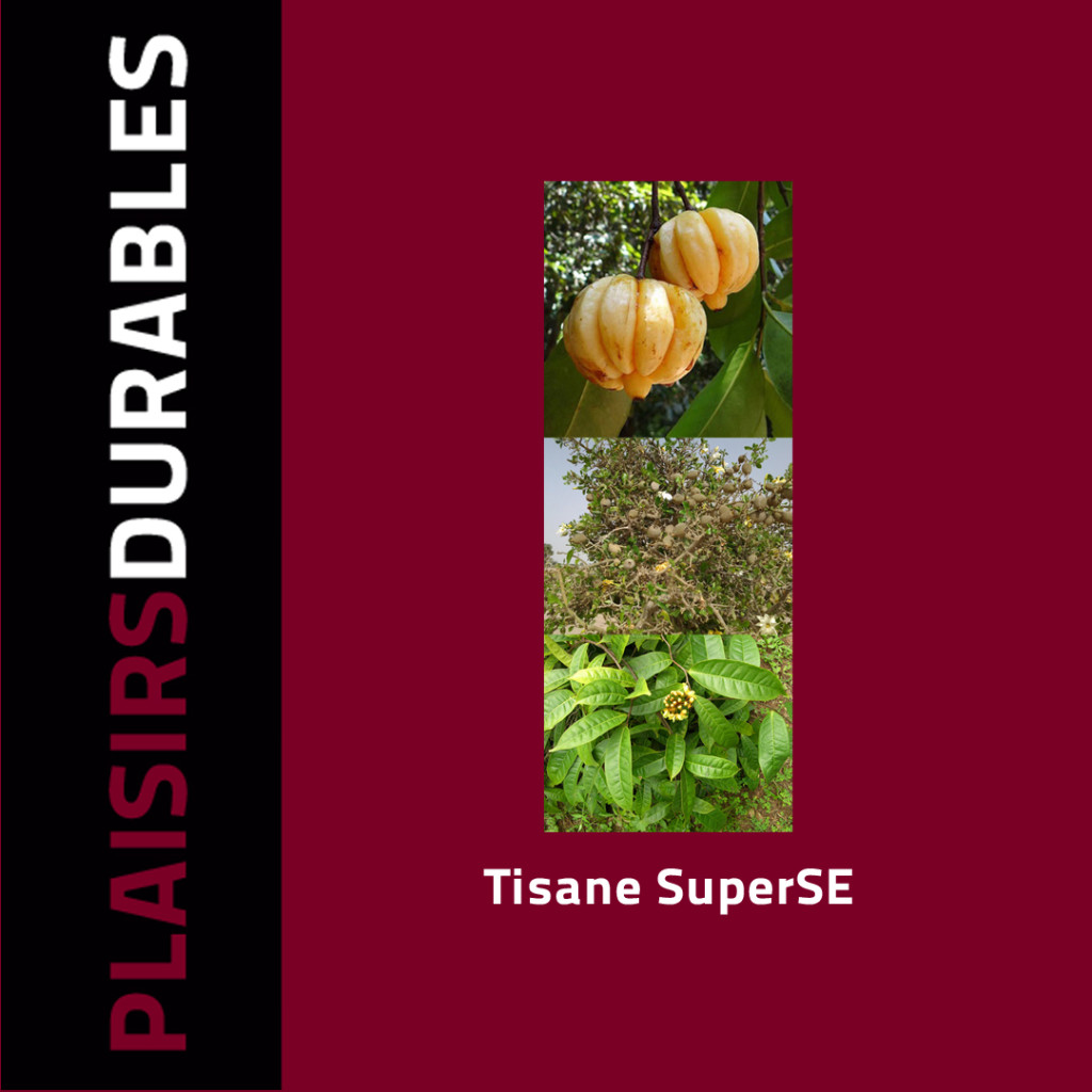 1032_Tisane_SuperSE